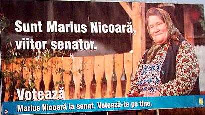marius_nicoara_senator